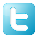 Twitter Publish Icon