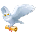 Owl harry potter bird mail hedwig animal fly