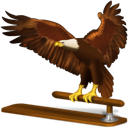 Animal bird eagle thunderbird