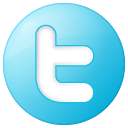 Twitter social blue button