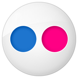 Social button flickr