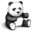 Toy bear teddy panda