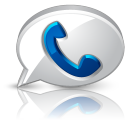 Google voice browser