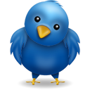 Bird blue twitter animal