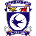 Cardiff town city
