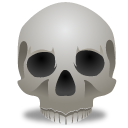 Skull wing smile icon