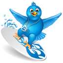 Surfing twitter bird