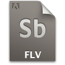 Flv file sb document secondary