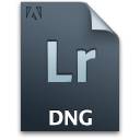 Secondary lr file dng document