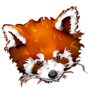Firefox panda animal fox roux