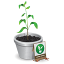 http://icongal.com/gallery/image/41418/green_seedling_plant_tree.png