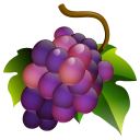 True vine food grapes