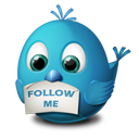 Follow me twitter animal bird
