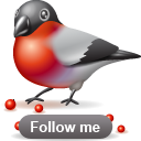Bullfinch follow