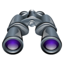 http://icongal.com/gallery/image/54600/zoom_find_search_binoculars.png