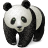 Animal china cute bear oriental chinese panda