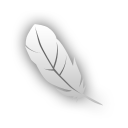 Photoshop ps feather