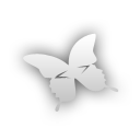 Butterfly indesign