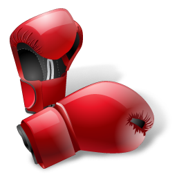 Sport sports gloves boxing box